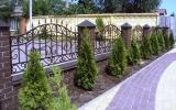 фото: забор кованый 3