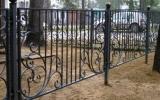 фото: забор кованый 27